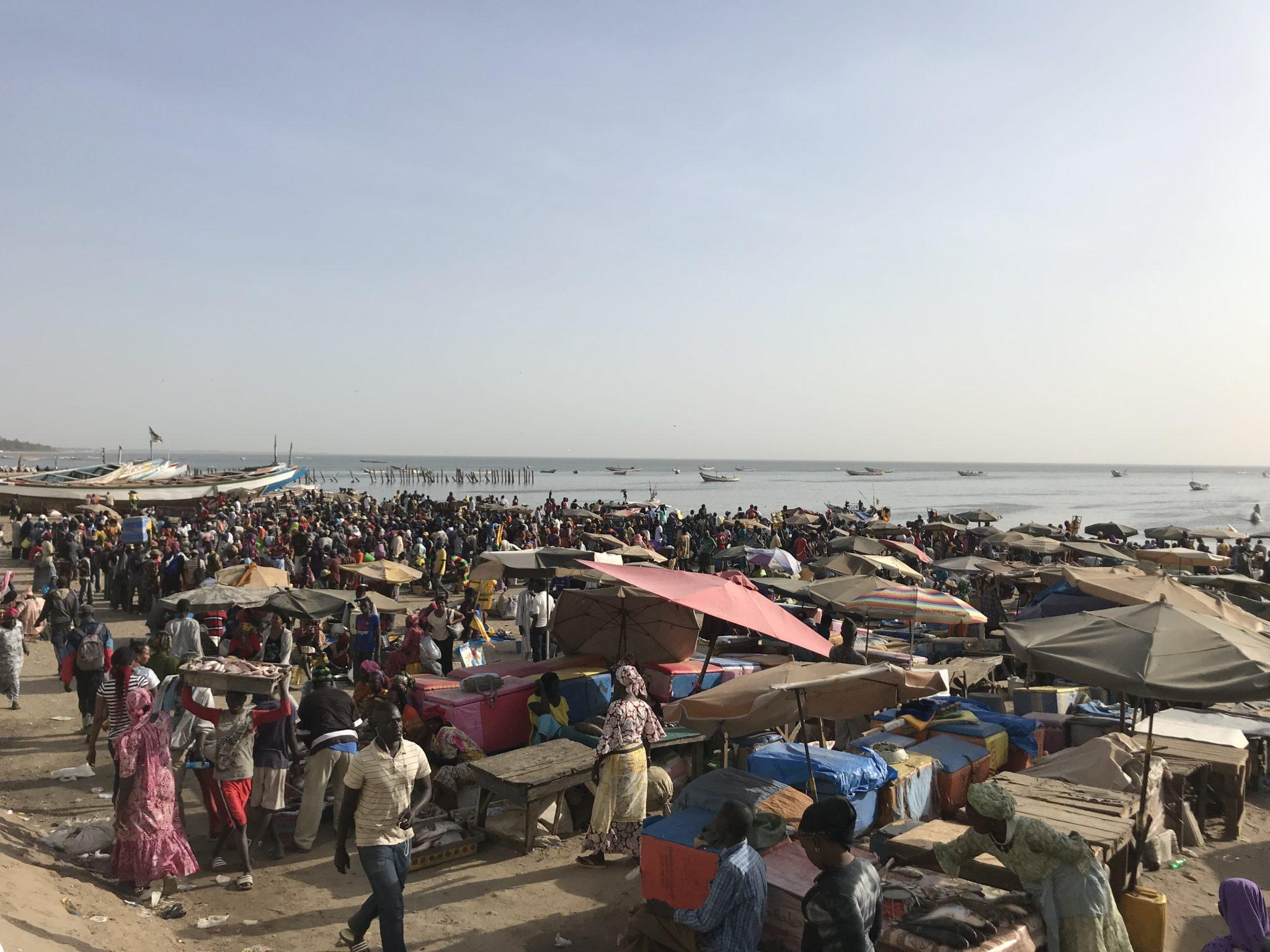 L'arrivée des pêcheurs au Sénégal