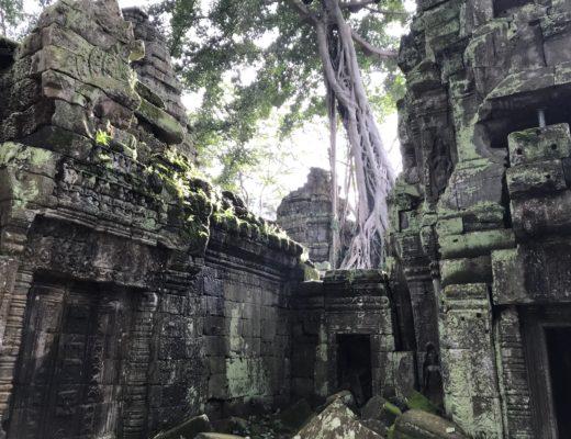 activites-que-faire-siem-reap-cambodge