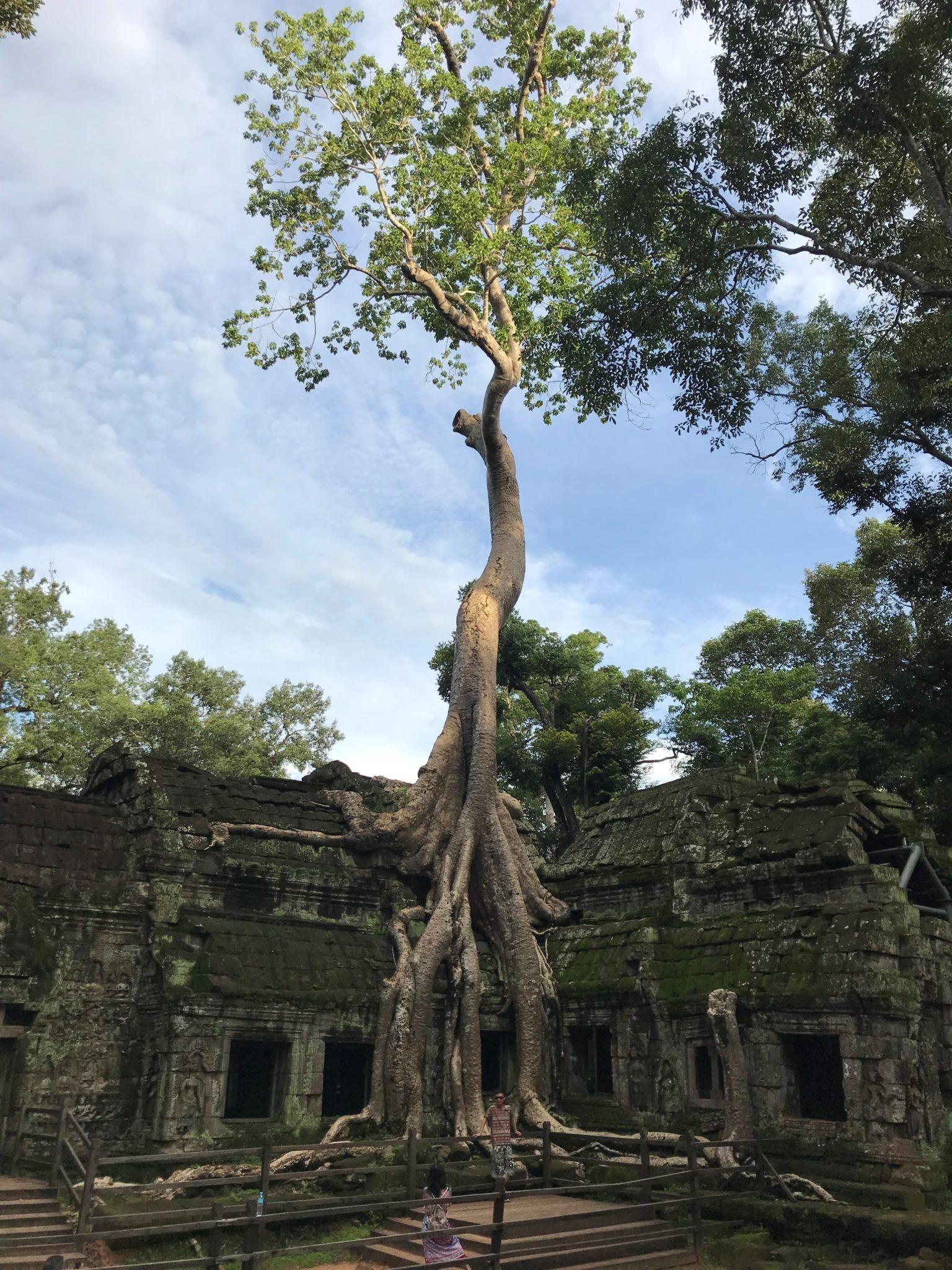 que-faire-angkor-siem-reap